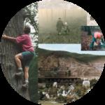Wald und Mensch – Dauerausstellung und Themenroute